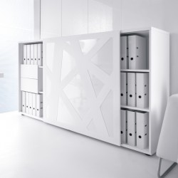 Storage Cabinet with sliding door ZS01