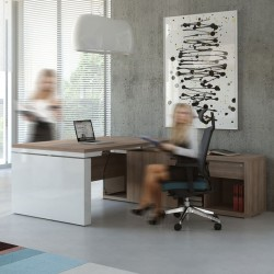 Executive desk with height adjustment top and managerial